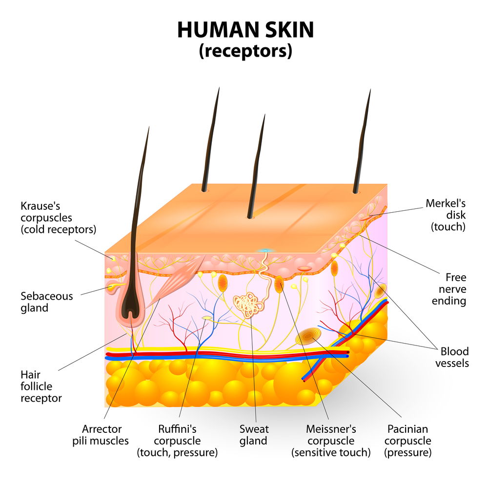 Acne Treatment And Prevention
